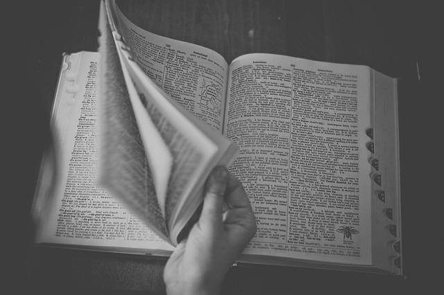 Trucos para usar mejor el diccionario